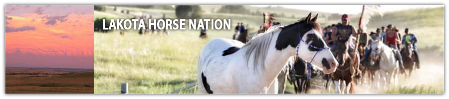 Lakota Horse Nation